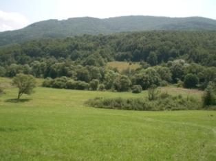 Land Kamenari