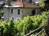 House Village Slaveyno #